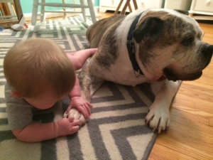 Mack conflicted by his love for Peanut and his hate of having his paws touched.